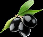 olive_450x388